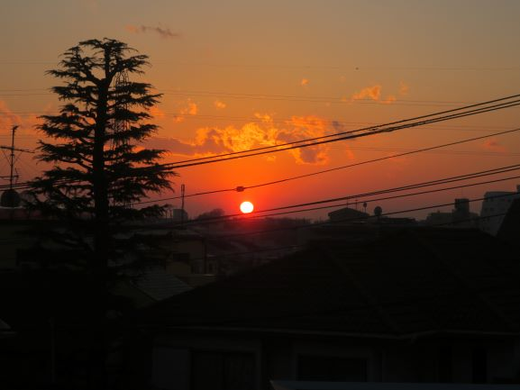 夕日がきれい、電線汚い③